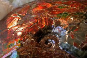 dave-siskin-20150617-ammolite